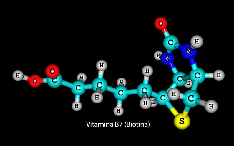 La horchata de chufa natural tiene altos niveles de Vitamina B7